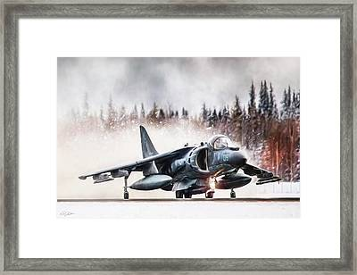Snow Angel Harrier Framed Print by Peter Chilelli