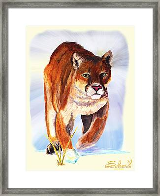 Snow Cougar Framed Print by Sherril Porter