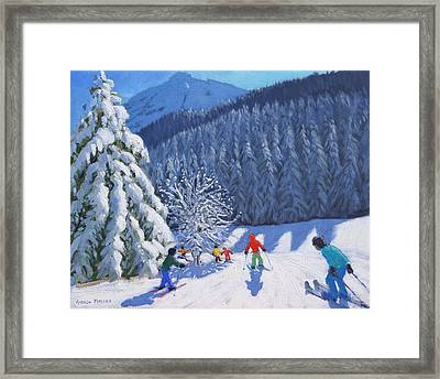 Snow Covered Trees Framed Print by Andrew Macara