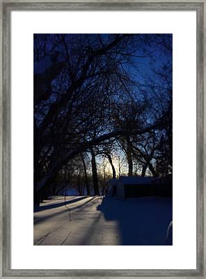 Snow Day Framed Print by Allison Slessor