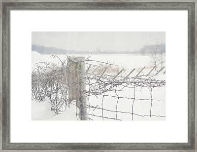 Snow Fence Framed Print by Sandra Cunningham