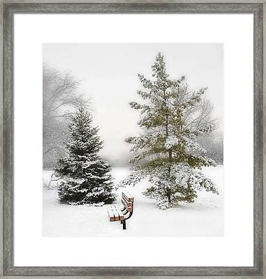 Snow In The Park Framed Print by Liviu Leahu