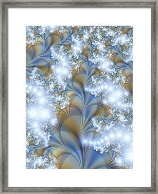 Snow Petals Framed Print by Lauren Goia