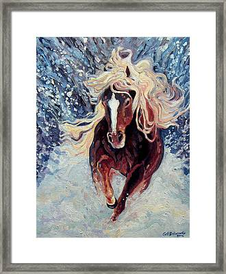 Snow Pony Framed Print by Gill Bustamante