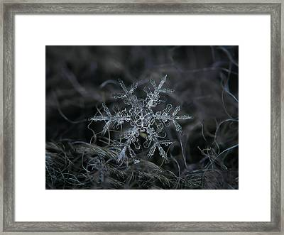 Snowflake 2 Of 19 March 2013 Framed Print by Alexey Kljatov