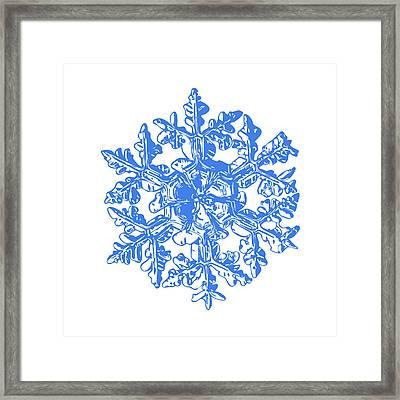 Snowflake Vector - Gardener's Dream White Version Framed Print by Alexey Kljatov