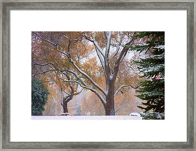 Snowy Autumn Landscape Framed Print by James BO  Insogna
