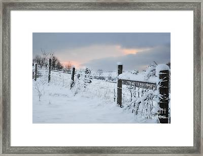 Snowy Day Framed Print by Kathy Jennings