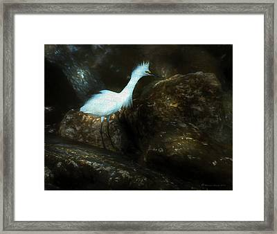 Snowy On The Rocks Framed Print by Marvin Spates