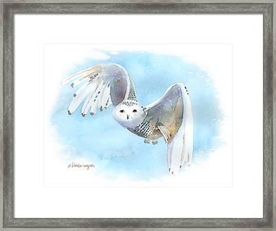 Snowy Owl In Flight Framed Print by Arline Wagner