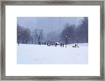 Snowy Playtime Boston Common Boston Ma Framed Print by Toby McGuire