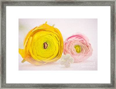 So Sweet Framed Print by Angela Doelling AD DESIGN Photo and PhotoArt
