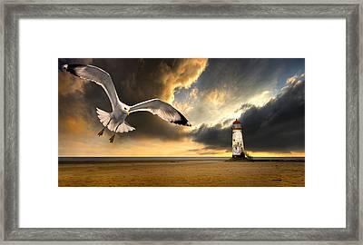Soaring Inshore Framed Print by Meirion Matthias