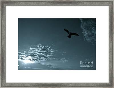 Soaring Framed Print by Valerie Rosen