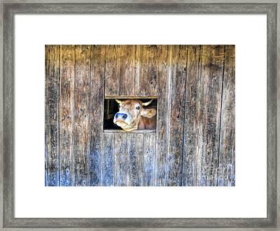 Social Channel Framed Print by GabeZ Art