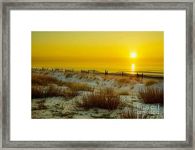 Soft And Dreamy Framed Print by Matthew Trudeau