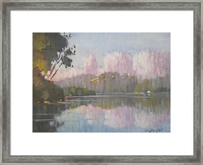 Soft Reflections Framed Print by Len Stomski