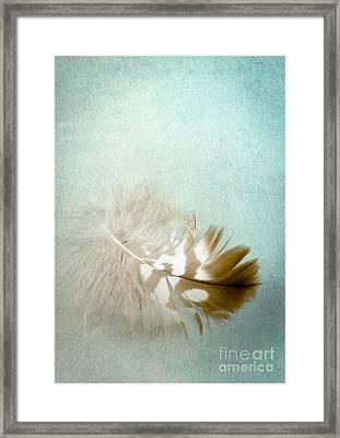 Softly Framed Print by Jan Bickerton