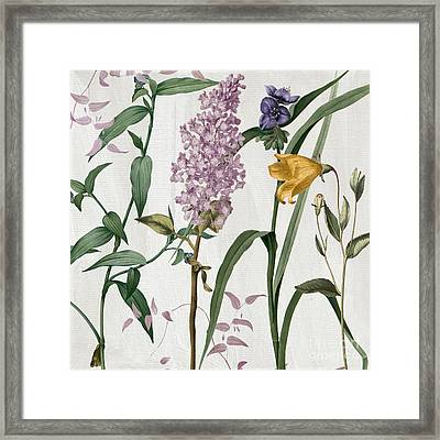 Softly Lilacs And Crocus Framed Print by Mindy Sommers
