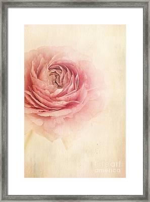 Sogno Romantico Framed Print by Priska Wettstein