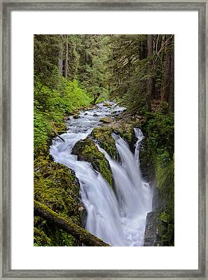 Sol Duc Framed Print by Doug Oglesby