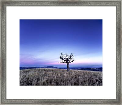 Solace And Grace Framed Print by Leland D Howard