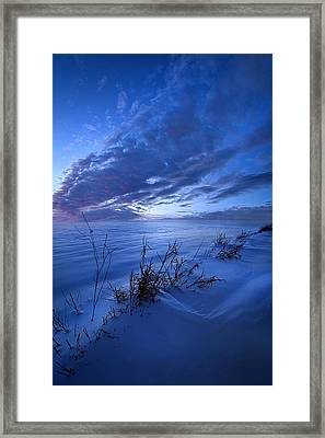 Solitaire Moments Dressed In Blue Framed Print by Phil Koch