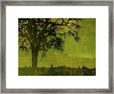 Solitude Framed Print by Bonnie Bruno