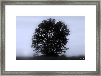Solitude Framed Print by Ed Smith