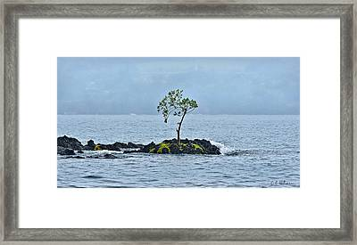 Solitude In Hilo Bay Framed Print by Christopher Holmes