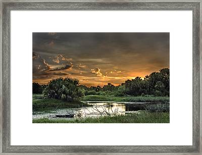 Solitude Framed Print by Norman Johnson