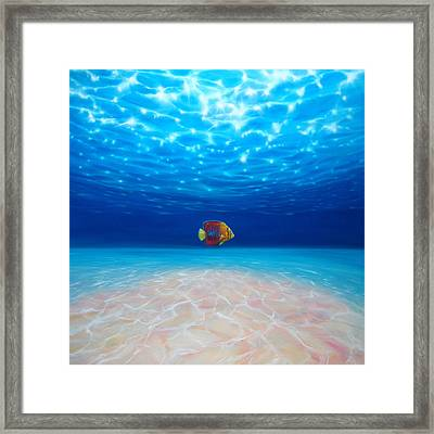 Solo Under The Sea Framed Print by Gill Bustamante