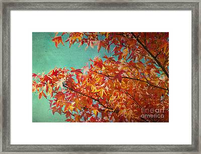 Somedays Framed Print by Angela Doelling AD DESIGN Photo and PhotoArt
