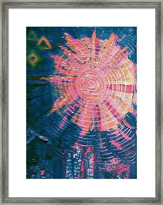 Something New Under The Sun Framed Print by Anne-Elizabeth Whiteway