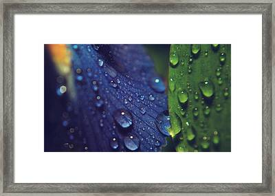 Sometimes Souls Collide Framed Print by Laurie Search