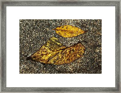 Sometimes The Piece Does Not Fit Framed Print by Karol Livote