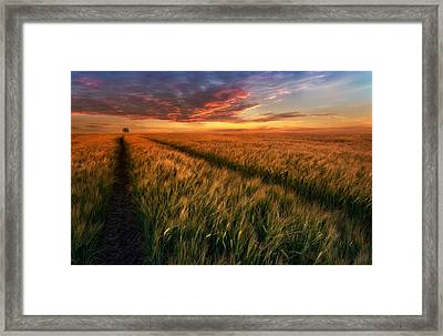 Somewhere At Sunset Framed Print by Piotr Krol (bax)