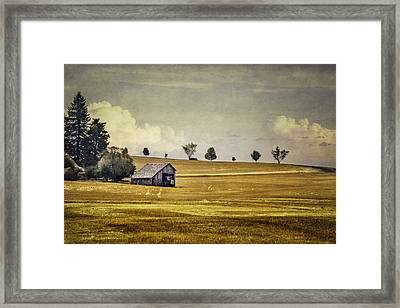 Somewhere In The Palouse Framed Print by Eduard Moldoveanu