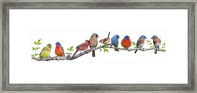 Songbirds On A Leafy Branch Framed Print by Bonnie Barry