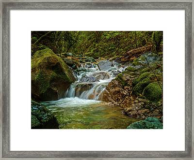 Sonoma Valley Creek Framed Print by Bill Gallagher