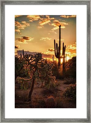 Sonoran Sunset On The Horizon  Framed Print by Saija Lehtonen