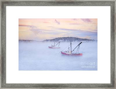 Soon As The Morning Comes Framed Print by Evelina Kremsdorf