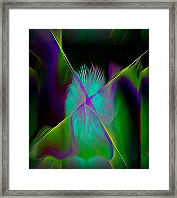 Soulful Framed Print by  Fli Art