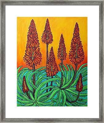 South African Fireball Framed Print by Lisa  Lorenz