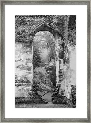 South Carolina Historic Church Black And White Sheldon Ruins-- A View From The Inside Framed Print by Bill Swindaman