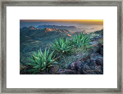 South Rim Twilight Framed Print by Inge Johnsson