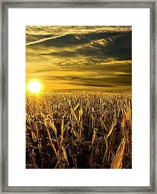 Southbound Framed Print by Phil Koch