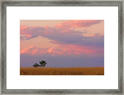 Spacious Skies Amber Waves Of Grain Boulder County Framed Print by James BO  Insogna