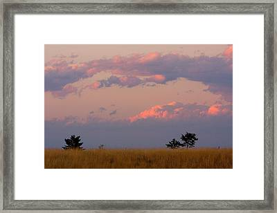 Spacious Skies Amber Waves Of Grain Ll Boulder County Framed Print by James BO  Insogna