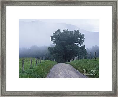 Sparks Lane - Fm000117 Framed Print by Daniel Dempster